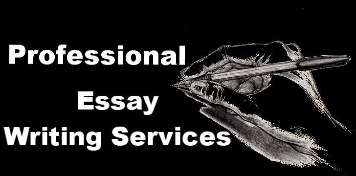 Essay writing service in ny